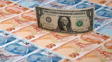 Forex reserves surge for 17th straight week; rise to record high of $462 billion