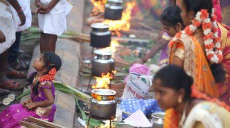 Pongal 2020: Members of the Tamil community celebrate Pongal at Dharavi in Mumbai
