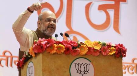 Delhi polls: Press lotus button so hard that anti-CAA protesters vacate Shaheen Bagh, says Amit Shah