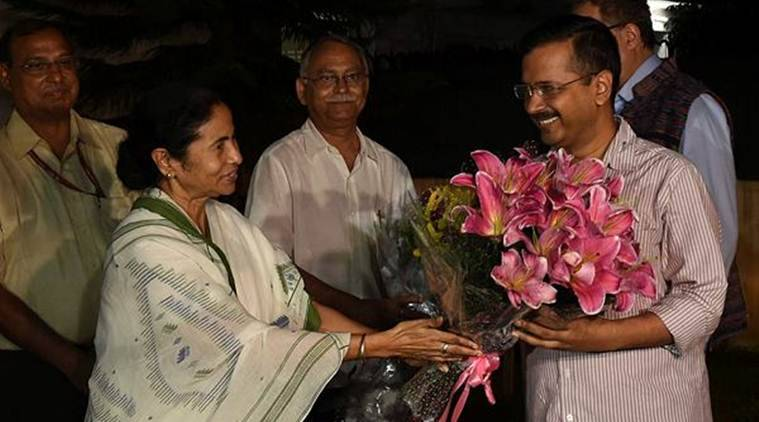 'Vote for AAP': TMC endorses Arvind Kejriwal's party in Delhi Assembly polls