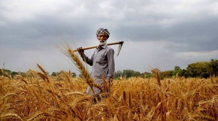 Union budget, Union budget 2020, BJP government, farmers crisis, slashing GST rates, GST rates on farm produce, Indian express