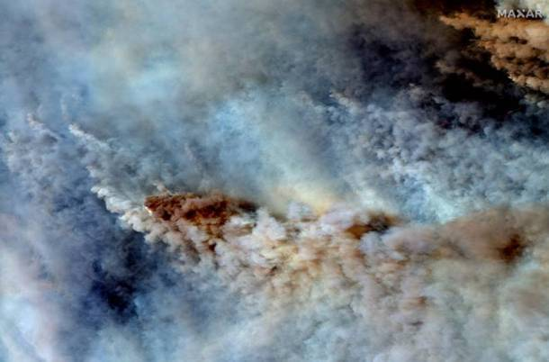 Australia bushfires, Australia forest fire, Australia wildfires, Australia bushfires death toll, New SOuth Wales bushfires, Australia news, world news