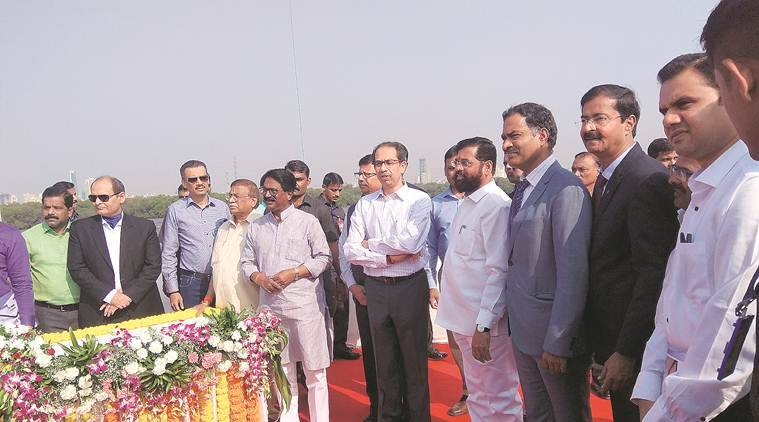Flamingos near construction site, adapted to MTHL work: CM