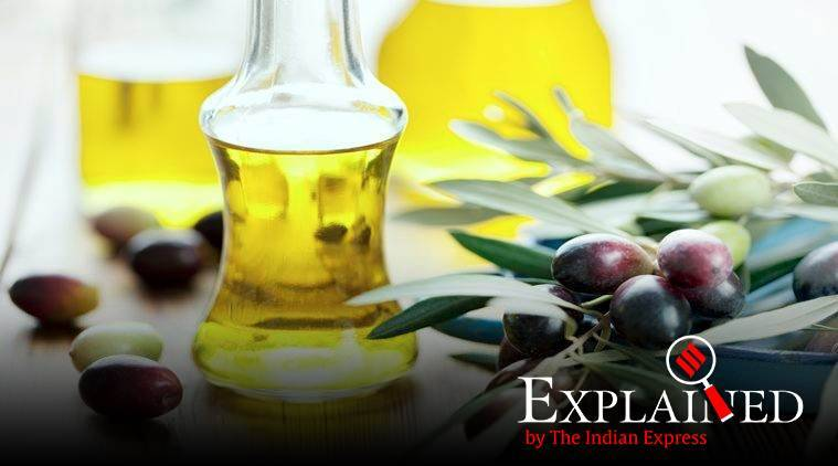 palm oil, india malaysia ties, palm oil import, palm oil trade, india malaysia trade, indian express news