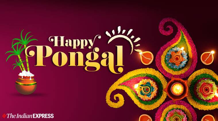Happy pongal 2020 whatsapp wishes images status quotes messages and photos
