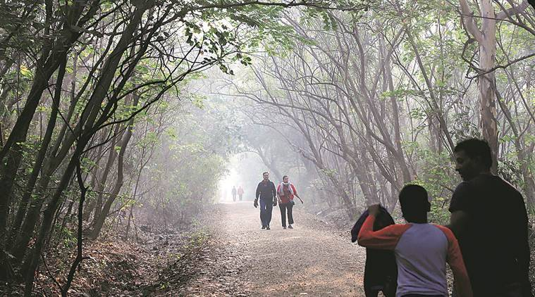 pune city news, pune weather, pune temperature, pune cold, pune weather today, pune rains