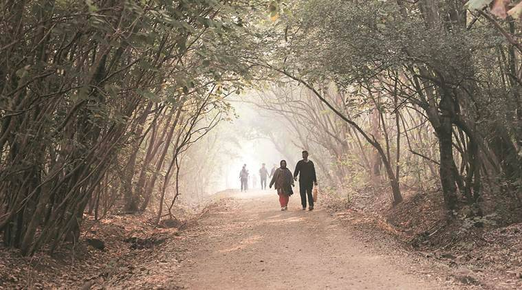 Pune weather, Cloudy conditions in pune, pune cold, pune news, pune city news, indian express news