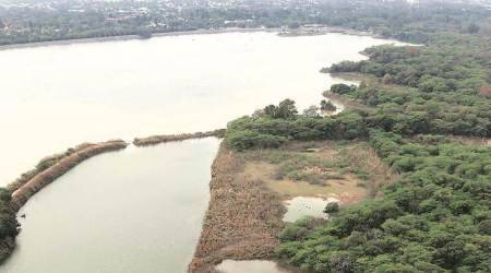 sukhna lake, sukhna lake case, sukhna lake case punjab and haryana high court, water level at sukhna lake, chandigarh city news