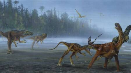 Allosaurus jimmadseni, allosaurus fragilis, new dinosaur fossil, paleontologist discover new dinosaur species, university of utah