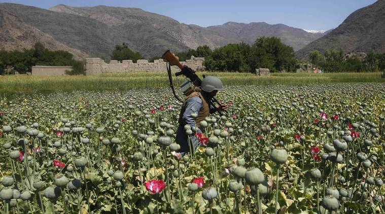 Afghanistan nine homeless drug users shot dead by unidentified gunmen in kabul