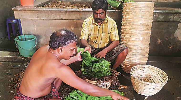 Kerala: Amidst slump, GI tag for betel variety