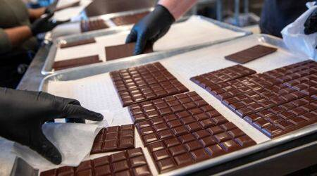 chocolate, chocolate making, chocolate beans, chocolate making, chocolate types, chocolate industry, chocolate farming, indian express news