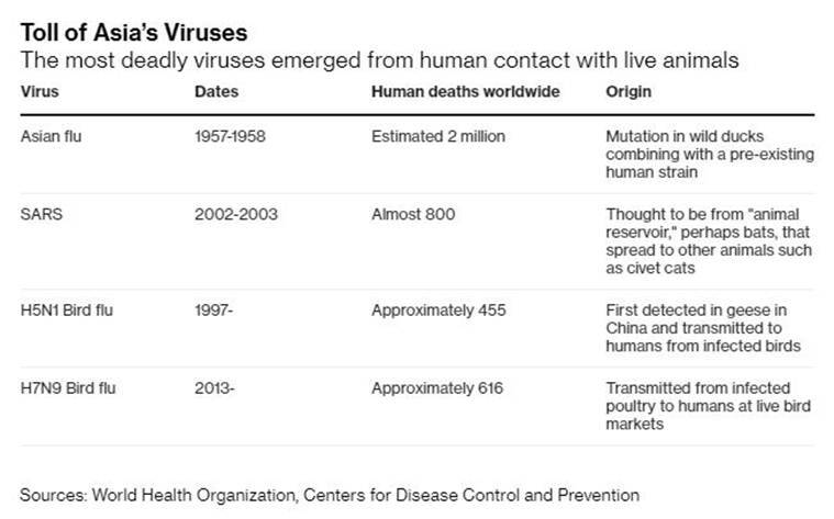 coronavirus outbreak, coronavirus china, coronavirus wuhan, 2019 n-Cov, coronavirus outbreak explained, express explained, indian express