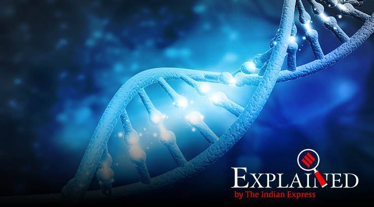 Explained: What is genome mapping?