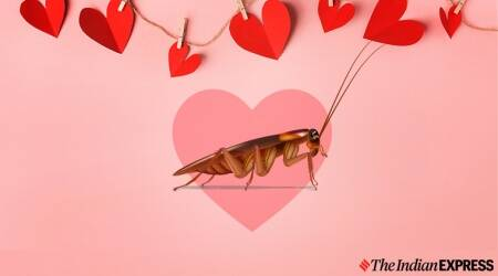 My Funny Valentine: Here's a new way to 'app-roach' a broken heart
