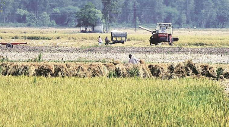 Armed with 'crowdsourced' farm equipment, Telangana set for 'bumper' paddy harvest  amid Covid-19