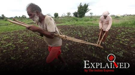 Explained: How crop insurance changes