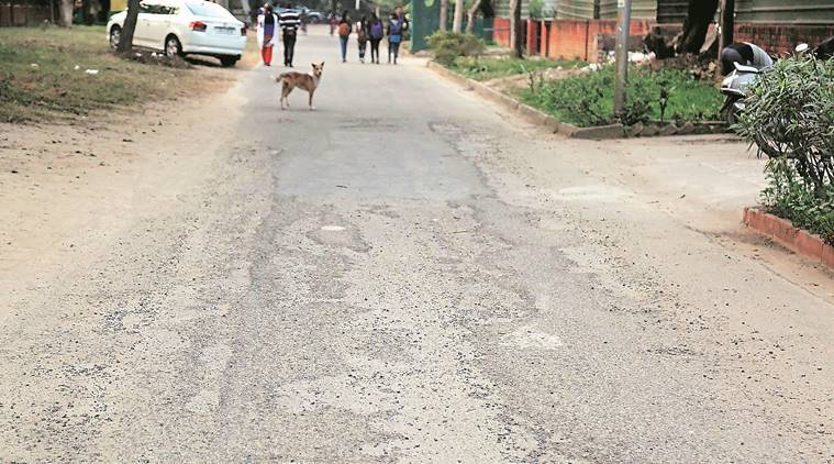chandigarh roads, chandigarh road conditions, chandigarh municipal corporation, chandigarh city news
