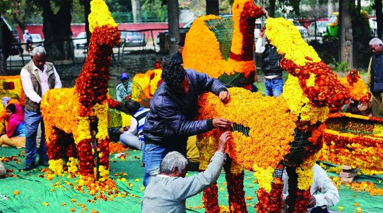Say no to plastic, yes to greenery at 48th Rose Festival