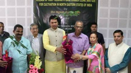 Biplab Deb, Tripura new rubber variety, RRII 429, rubber cultivation in India, rubber cultivation in Tripura, India Bangladesh transport route, tripura news, northeast news, indian express