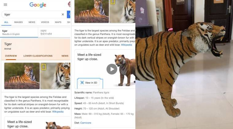 How To Watch Google 3d Animals Step By Step Guide Technology News The Indian Express
