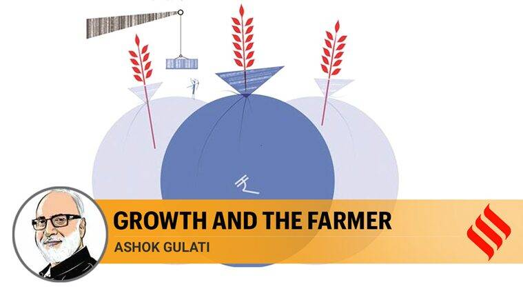 Growth and the farmer: Consumer bias in food policy reduces incentives for farmers
