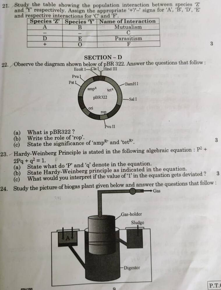 cbse class 12 biology exam, 12 biology question paper, cbse.nic.in, central board of secondary education, education news