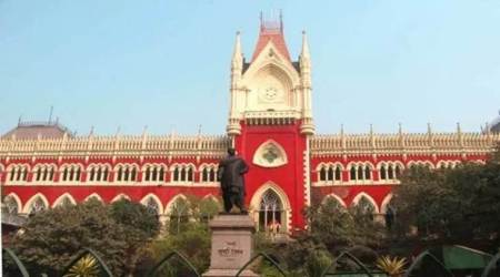 Polish student asked to leave India, Kamil Sedchinski, polish student ju asked to leave india, kolkata high court, kolkata news, indian express