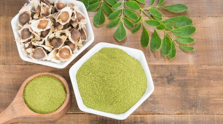 moringa, indianexpress