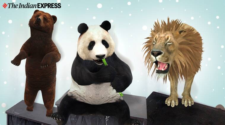 Google 3D animals: Watch AR pandas, lions, tigers at home