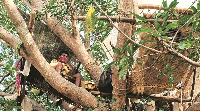 Coronavirus outbreak: Back from Chennai, 7 youths quarantined on tree outside Bengal village