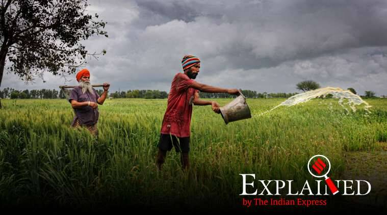 Ahead: bumper crop, multiple challenges