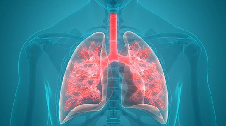 Simple home remedies to keep your lungs healthy, suggested by a wellness coach