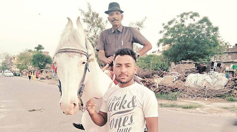 Chandigarh: Mare's carcass lying in hospital for two days as police fail to resolve issue of jurisdiction
