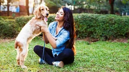 coronavirus, pet animal, PETA