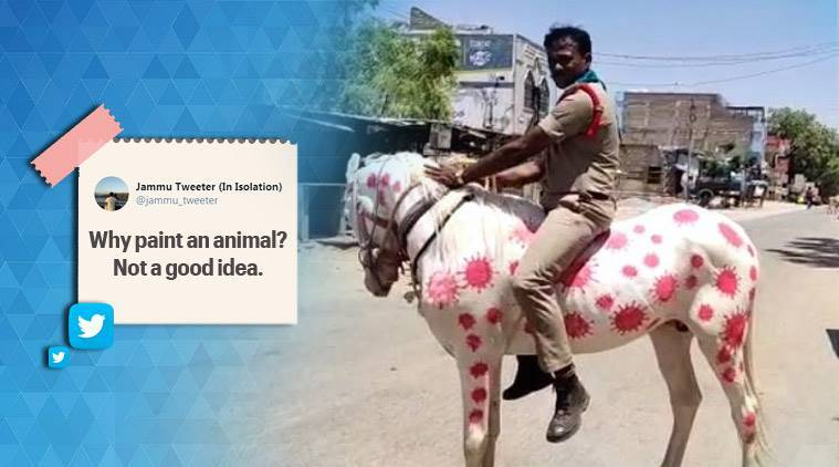 Andhra Pradesh cop rides horse painted with coronavirus images, draws flak online