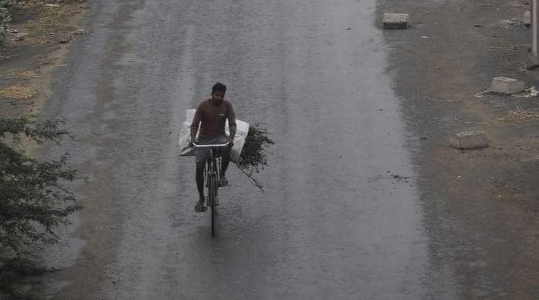 After closed APMCs, unseasonal showers add to farmer's woes in Gujarat