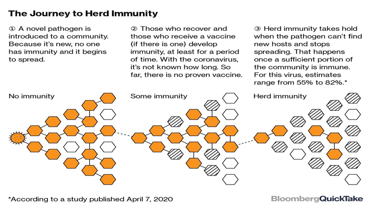 A Herd Immunity Strategy Could Actually Work in Youthful India