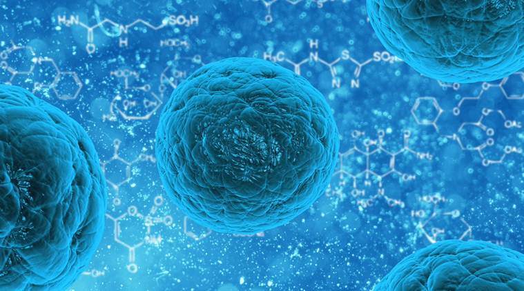 Unproven stem cell therapy gets OK for testing in coronavirus patients