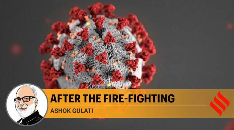 novel coronavirus cases, COVID-19 infection, India deaths, china virus, US cases, indian express news