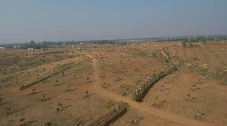 banka, drip irrigation, rainwater harvesting, lemon grass, bihar farmers, indian farmers