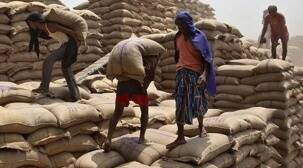Foodgrain supply to Gujarat doubled during lockdown: FCI