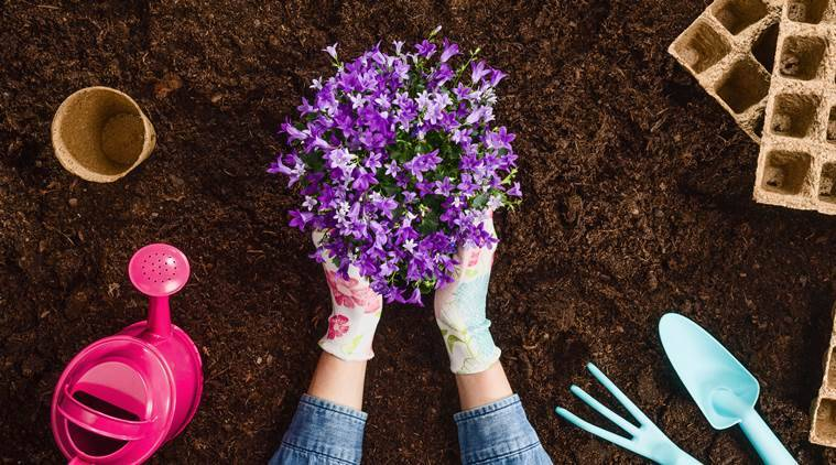 Can being around plants boost body positivity? Here's what science says