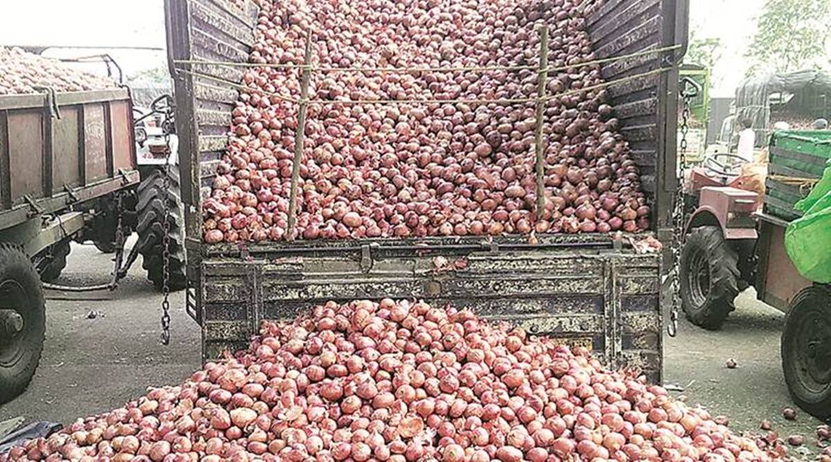 onion prices, onion price india, india onion trade ban, onion export ban, onion price india, india onion high price, indian express news