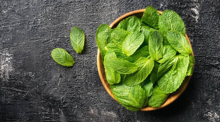 peppermint hair mask for summer hair, hair mask for sticky scalp in summer, hair care, indian express, indian express news