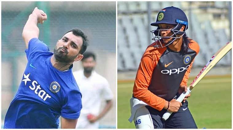 smriti mandhana, mohammed shami, mandhana shami, shami hit mandhana, smriti mandhana pic, smriti mandhana video, rohit sharma, cricket news, sports news