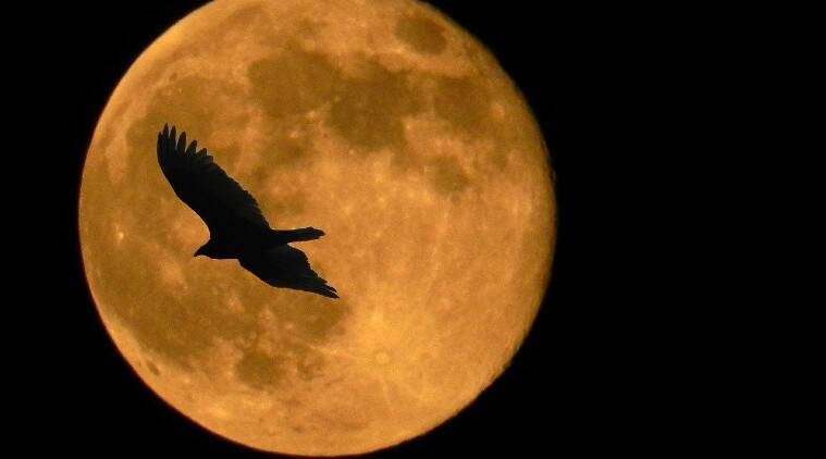 Super Pink Moon 2020 LIVE Updates: Date, India timings, how to watch the brightest full moon