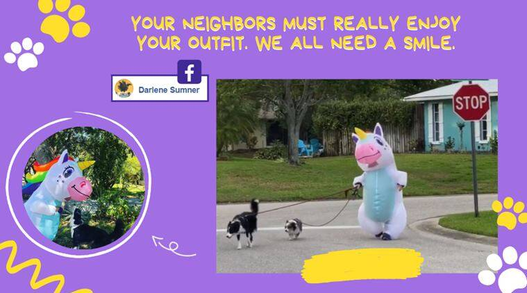 Watch: Florida woman takes her dogs out for walk during lockdown in a unicorn suit