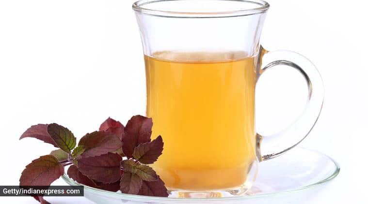 summer drink, healthy drinks, tulsi tea, tulsi kadha, health and immunity, health, indian express, indian express news