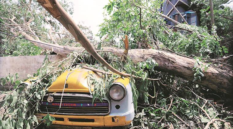 Amphan tears through bengal 2 days on, power & water supply yet to resume; residents protest in Kolkata